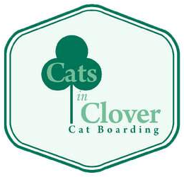 Cats in Clover Cattery
